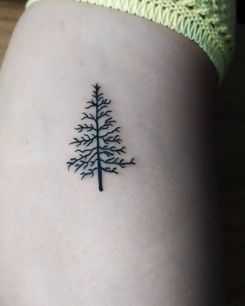 30 Pretty Pine Tattoos You Will Love
