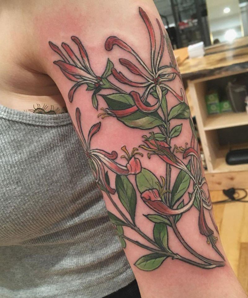 30 Pretty Honeysuckle Tattoos Make You Very Attractive