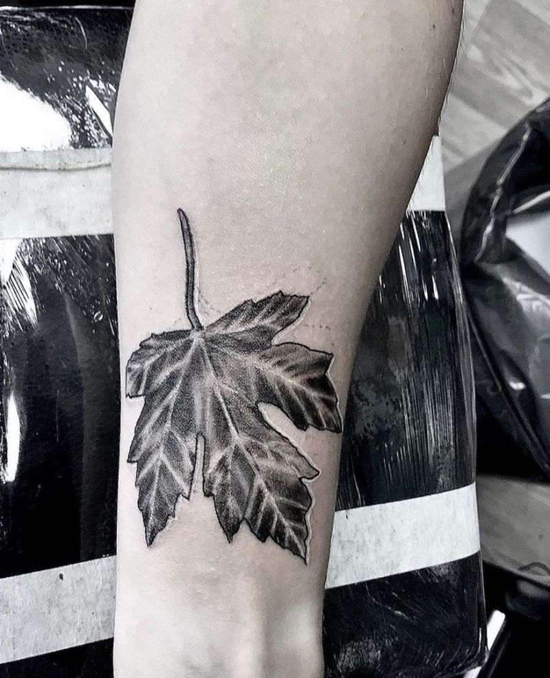 30 Elegant Maple Leaf Tattoos for Your Inspiration
