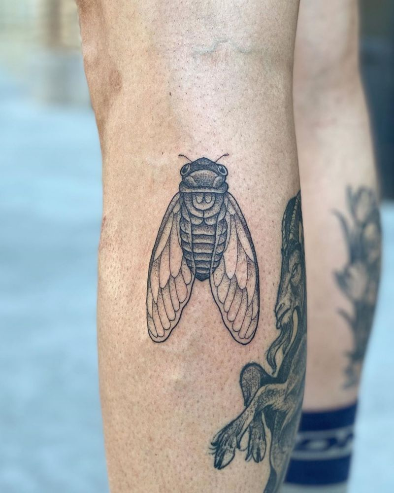 30 Pretty Cicada Tattoos Make You Attractive