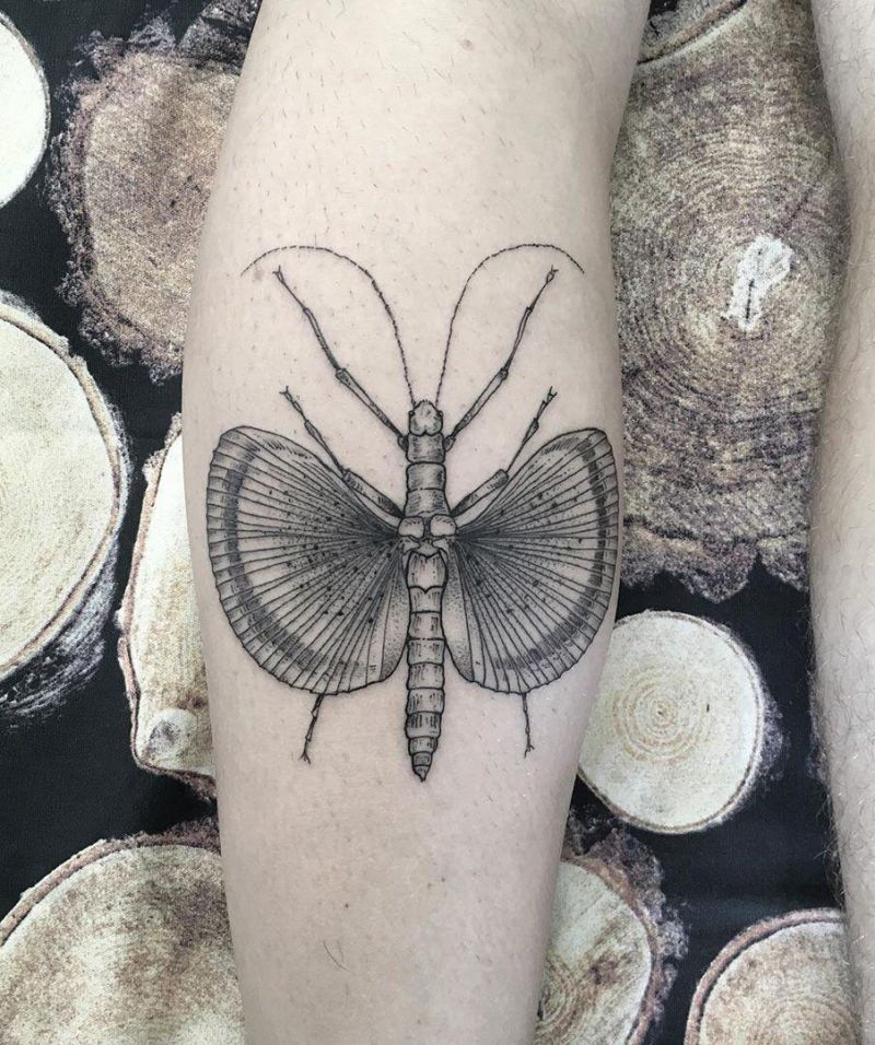 30 Pretty Grasshopper Tattoos You Must Try