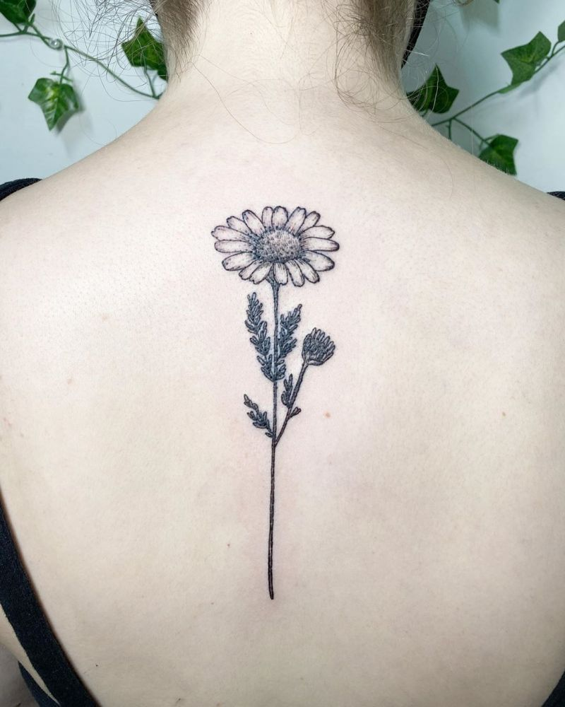 30 Pretty Chamomile Tattoos You Shouldn't Miss