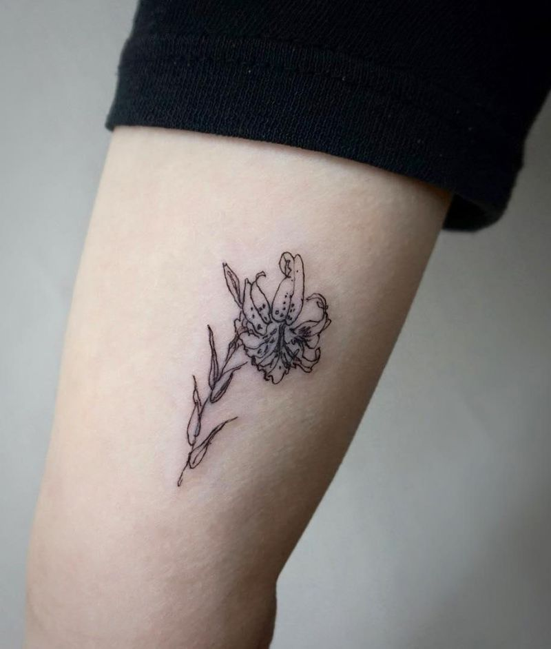 30 Pretty Daylily Tattoos Show Your Temperament