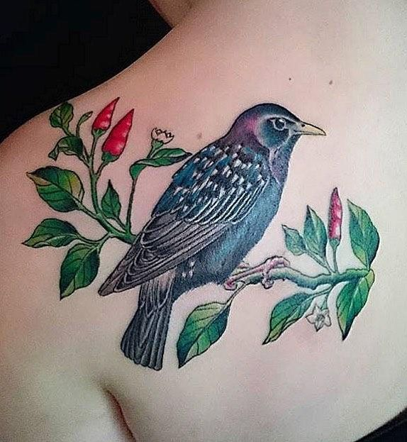 30 Pretty Starling Tattoos You Must Love